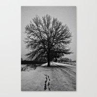 Solus Canvas Print