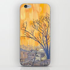 Silverbirch, north of Queen iPhone & iPod Skin