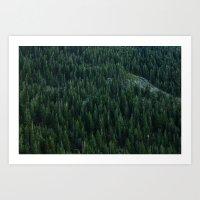 All the trees Art Print