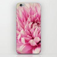 Mums III iPhone & iPod Skin