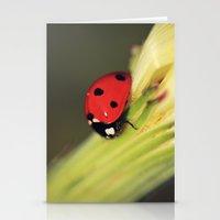 Vibrant Ladybird Stationery Cards
