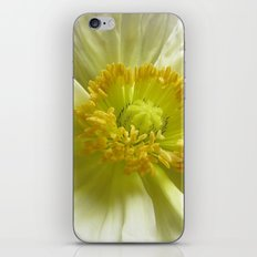 White Poppy iPhone & iPod Skin