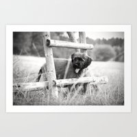 Little Adventurer - Pupp… Art Print