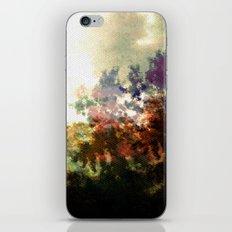 Beacon iPhone & iPod Skin