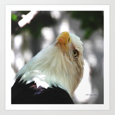 Yearning For Freedom Art Print