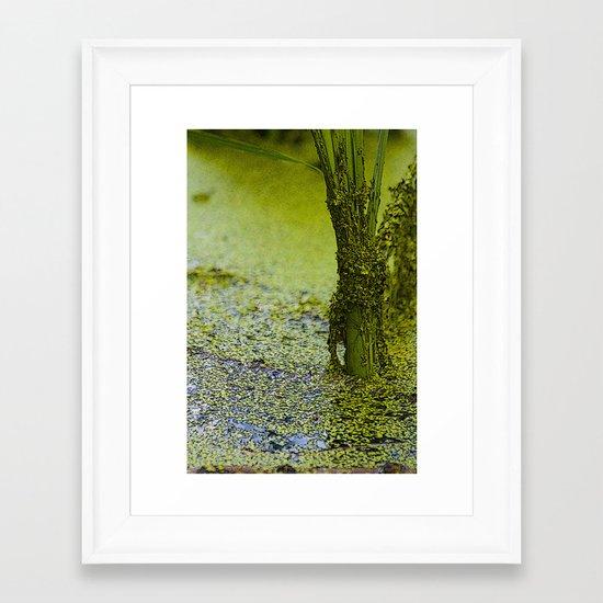 Swamp Things Framed Art Print