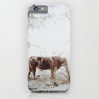 Maxwell iPhone 6 Slim Case