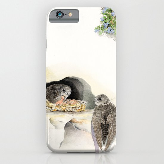 Swift - nesting bird on the Ligurian coast    iPhone & iPod Case