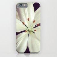 lilys iPhone 6 Slim Case