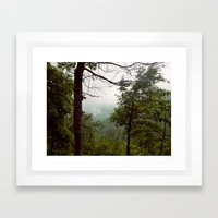 Smoky Mountains Tennessee Tree Color Photograph Framed Art Print