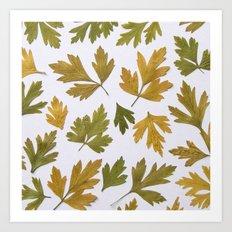 Parsley Autumn Art Print