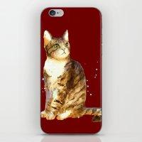 Here Kitty Cosmic Kitty iPhone & iPod Skin