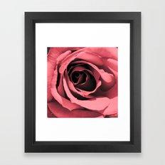Shape of my heart Rose Framed Art Print