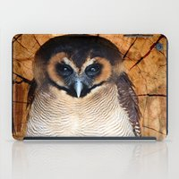 Asian Wood Owl iPad Case