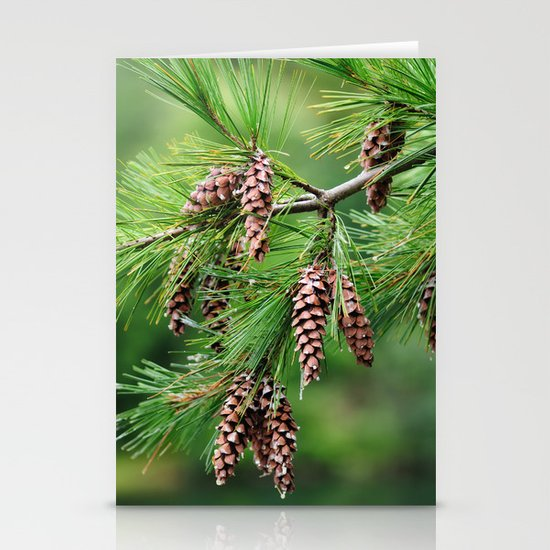 Pine cones Stationery Card