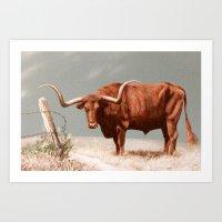Longhorn Steer painting Art Print