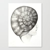 Caracola Canvas Print