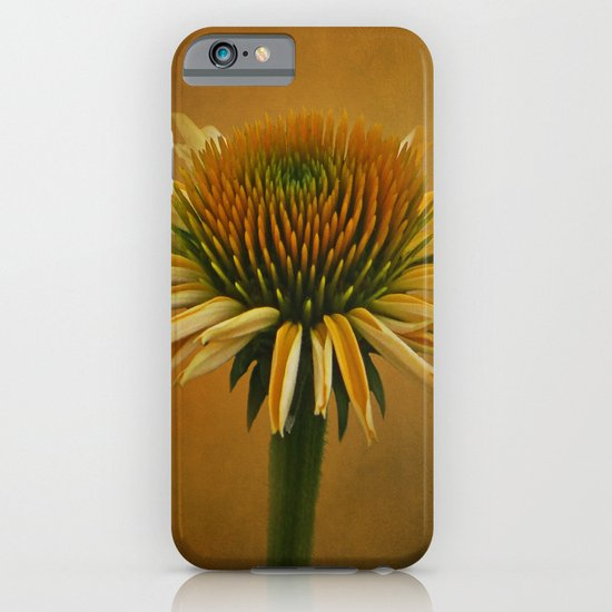 Dressed in Color iPhone & iPod Case