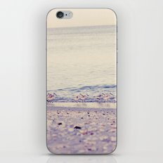Sandpipers iPhone & iPod Skin