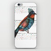 Birds and hats! iPhone & iPod Skin