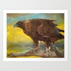 Golden Eagle (Aquila chrysaetos) Art Print