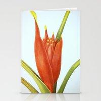 II. Vintage Flowers Bota… Stationery Cards