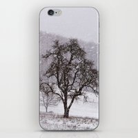 Old Pear Tree On A Winte… iPhone & iPod Skin