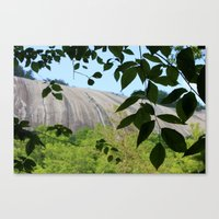 Mountain Through The Tre… Canvas Print