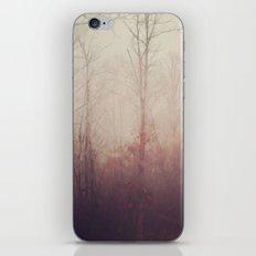 Winter Haze iPhone & iPod Skin
