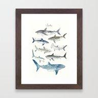 Framed Art Print featuring Sharks by Amy Hamilton
