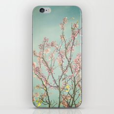Spring is here iPhone & iPod Skin
