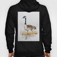 Bernache du Canada (Canada Goose) Hoody