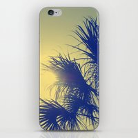 Palm Fronds  iPhone & iPod Skin