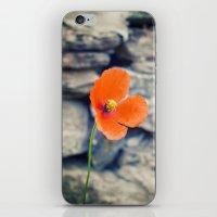 Alone Against The Wind iPhone & iPod Skin