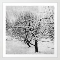 Blankets Of Snow Art Print