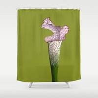 Pitcher Plant - Sarracenia leucophylla Shower Curtain