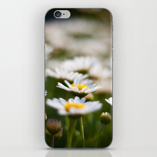Daisy Field iPhone & iPod Skin