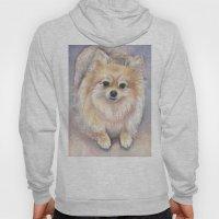 Pomeranian Watercolor Po… Hoody