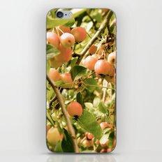 Cherry  Tree iPhone & iPod Skin