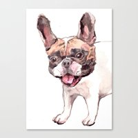 Canvas Print featuring French Bulldog by Becca Kallem