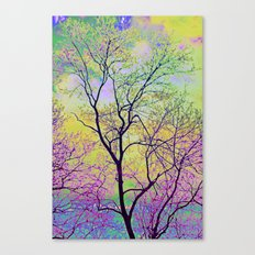 Late Sunset Canvas Print
