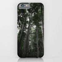 iPhone & iPod Case featuring Ascending by David Taylor
