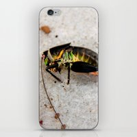 grasshopper iPhone & iPod Skin