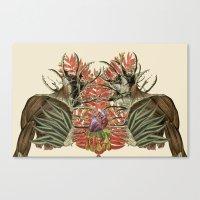 Fuerte Anatomical Collag… Canvas Print