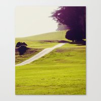 Day Tripping Canvas Print