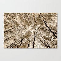 Sepia Fall Canvas Print