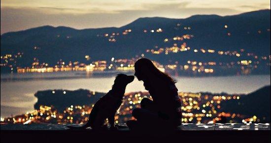 Girl and dog silhouettes  Art Print