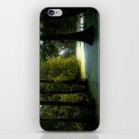 Swamp Land iPhone & iPod Skin