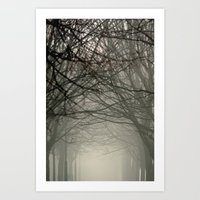 Branches Meeting In The … Art Print