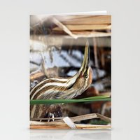 American Bittern - Take … Stationery Cards